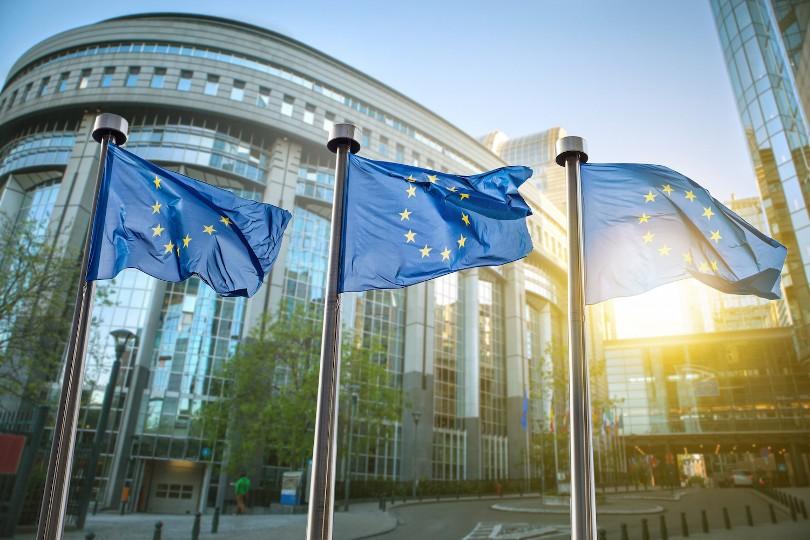 Dentro l'UE: quali alternative?